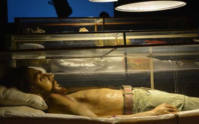 Cadáveres Indisciplinados