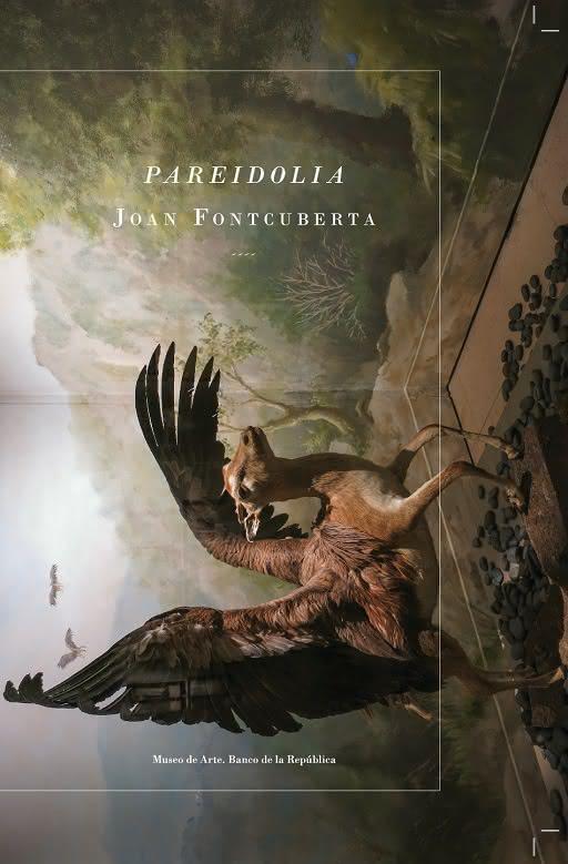 Pareidolia. Joan Fontcuberta