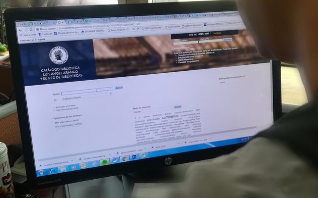 Persona navegando en un computador en la página del catálogo en línea